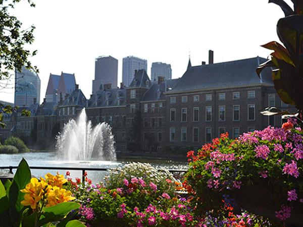 Politiek Den Haag